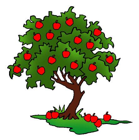 fruitful king fruit