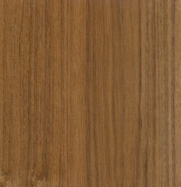 Types Of Wood Teak ~ Teak tree pictures